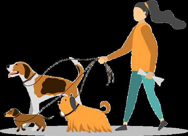 Αναλαμβάνω βόλτα σκύλων