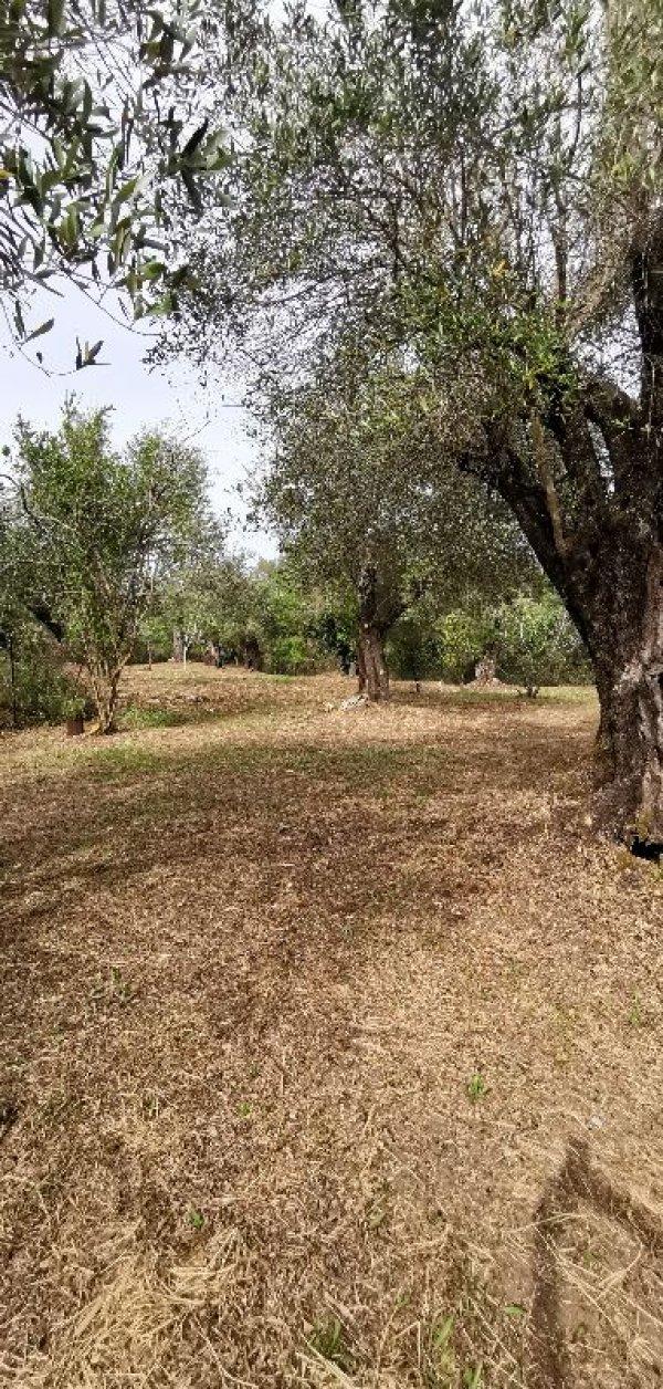 Πωλείται οικόπεδο κοντά στο Αχίλλειο