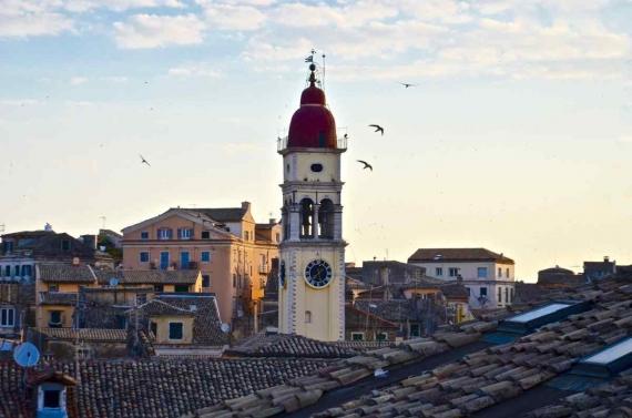 Χελιδόνια: οι προάγγελοι της Άνοιξης έφθασαν στην Κέρκυρα