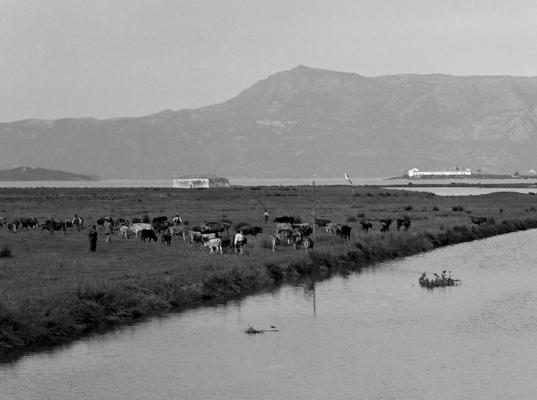Οι Αλυκές Ποταμού σε μία φωτογραφία του 1912